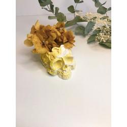 Calavera maravilla amarillo